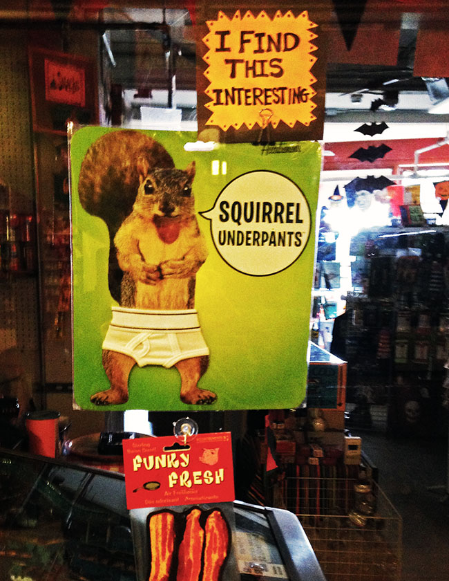 pike-place-squirrel
