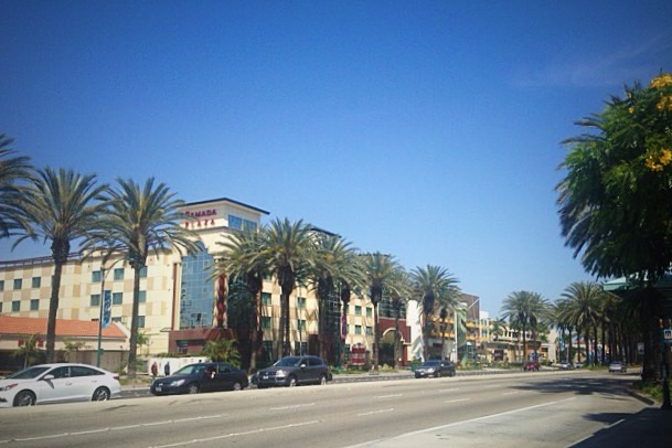 Anaheim Resort District Dining 2016 Travelcraft Journal