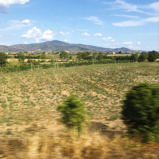 View from train in italy