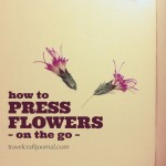 How to press flowers while traveling