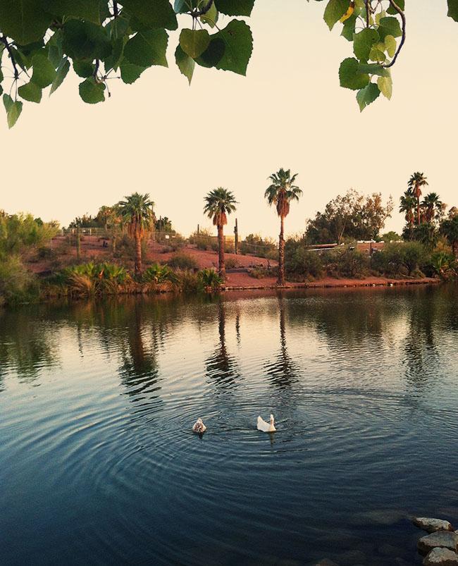papago-park-lake