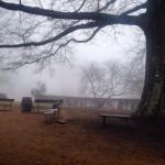 January Photo: Monticello Fog
