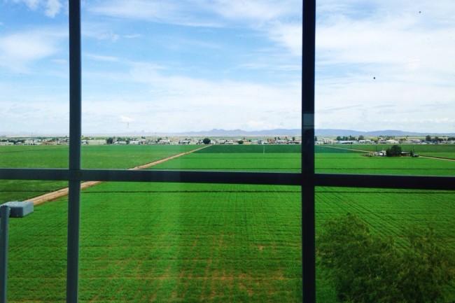 Yuma farm
