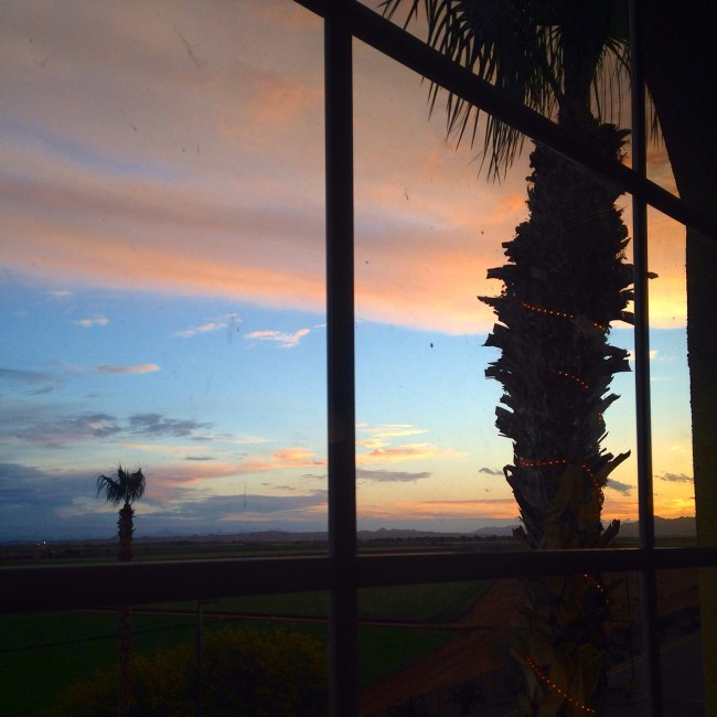 Yuma farm view from hotel