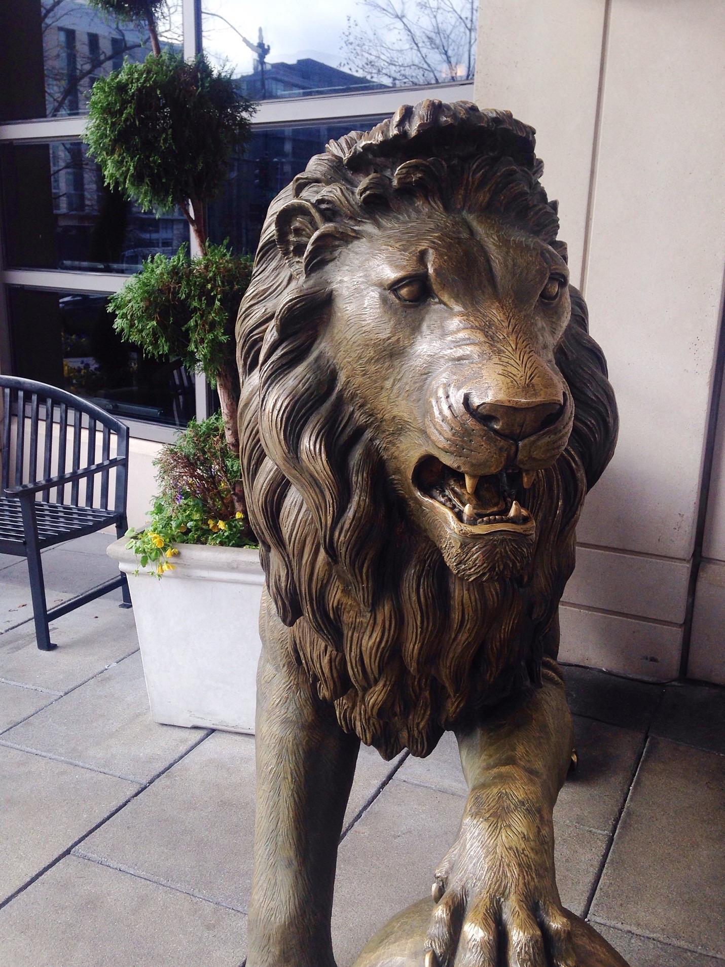 Embassy suites DC