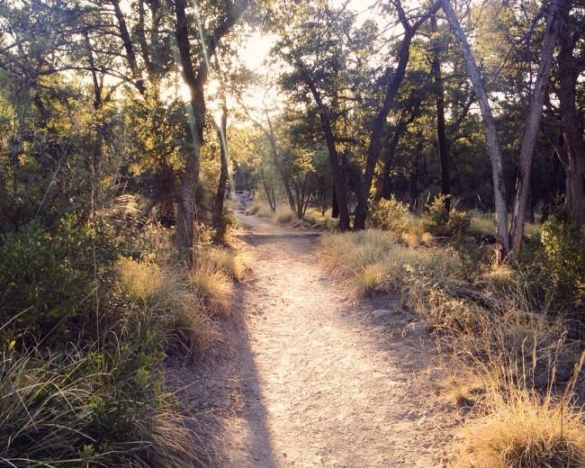 Chiricahua trail