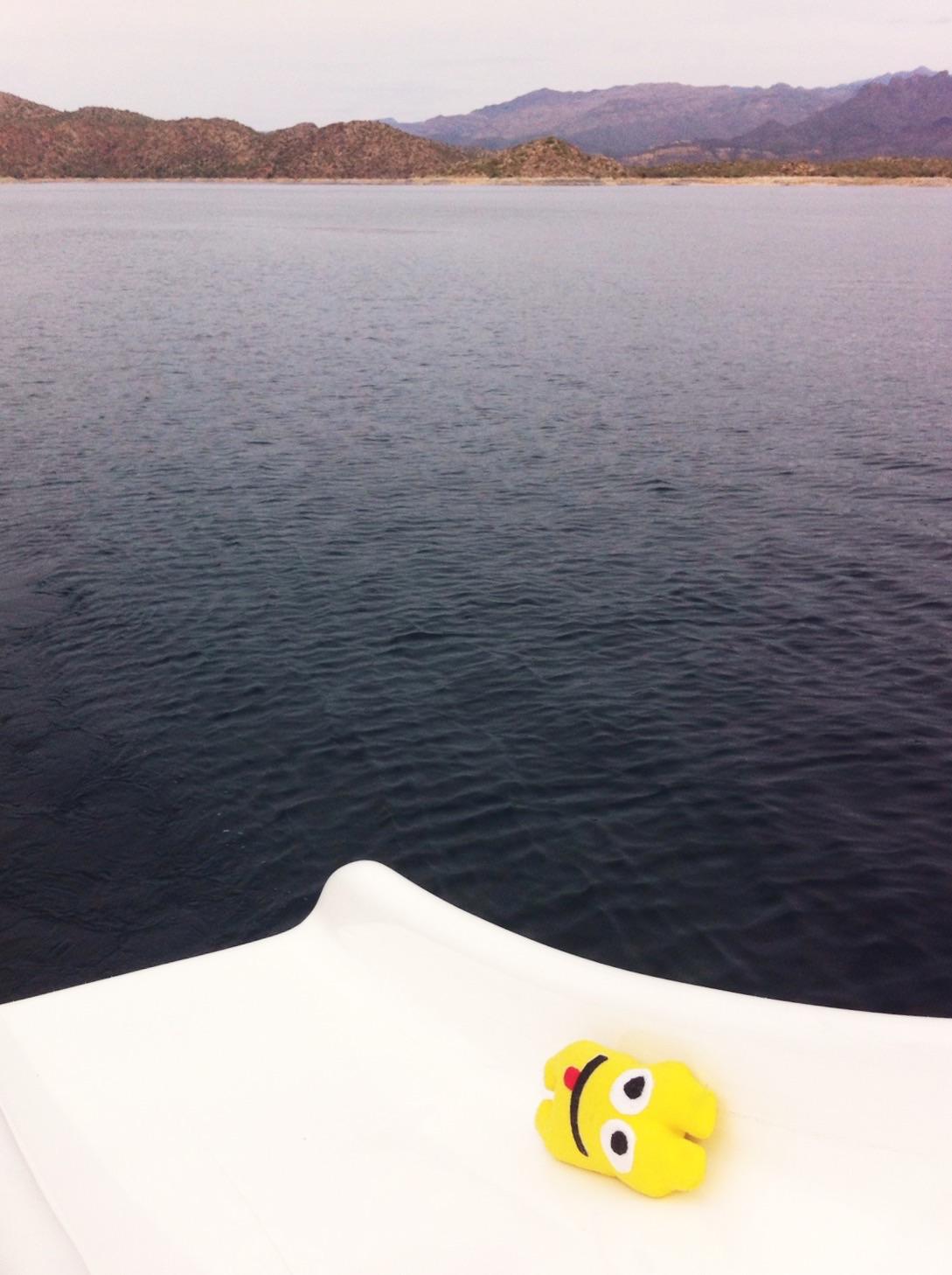 Bartlett Lake Marina Boat waterslide
