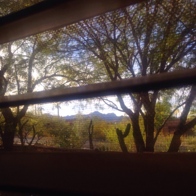 Tucson airbnb view