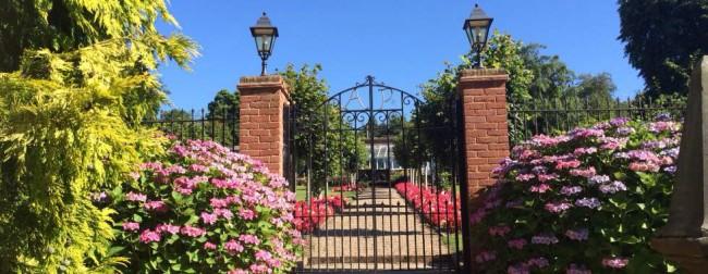 Ashdown Park http://www.ashdownpark.com/national-garden-scheme-open-day-0