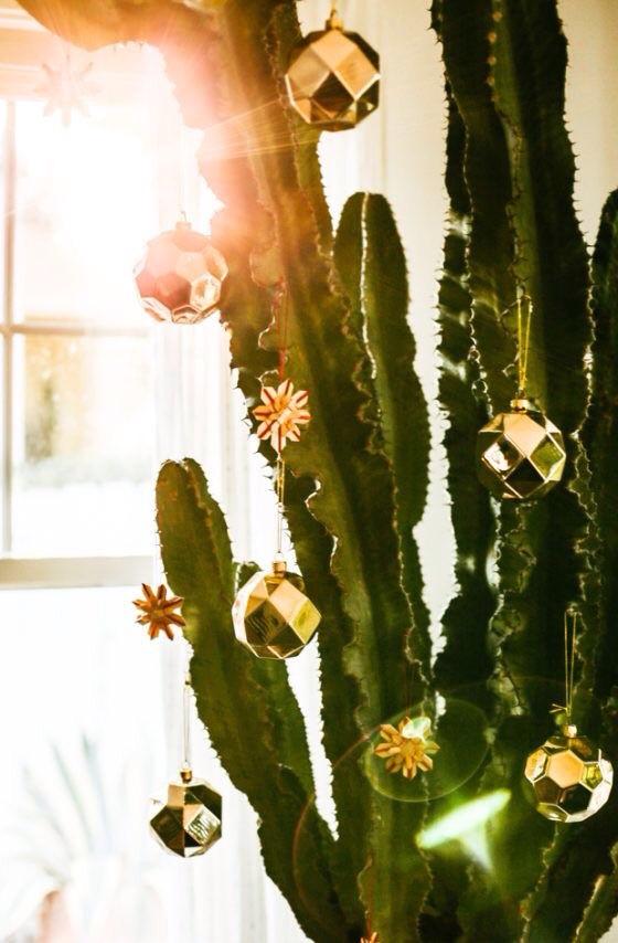 Decorated cactus
