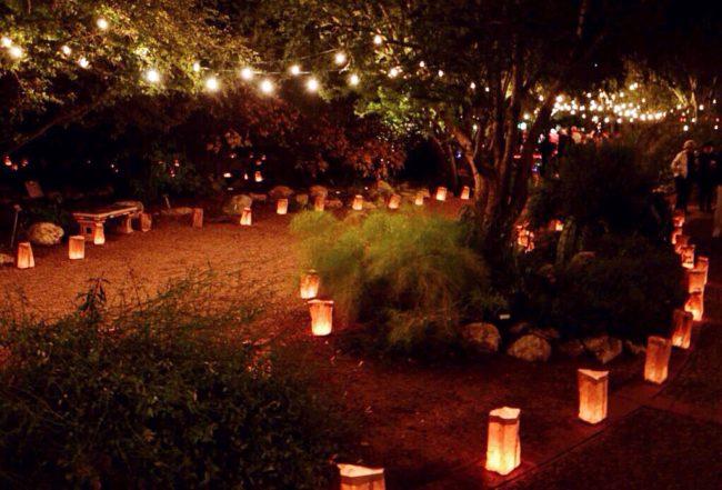 Luminarias at Tucson Botanical Garden.